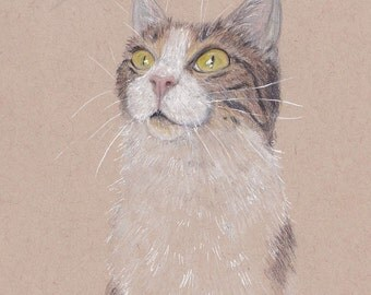 Rough pet portrait