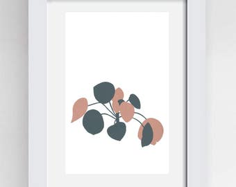 Pilea plant leaves botanical painting in gouache A4 size original artwork painted on cartridge paper