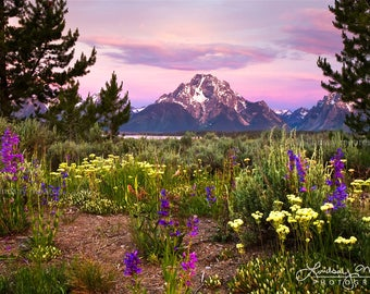 "Mountain Wall Art | ""Grand Teton Sunrise 