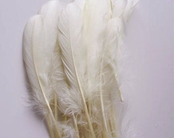 """White Goose Feathers, 100 Loose Feathers / 6""""-7""""long"""