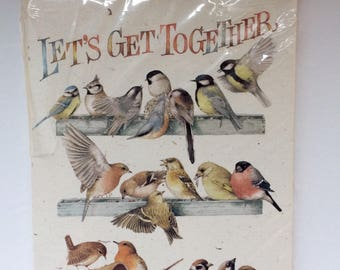 "Watercolour Bird Invitations, Cards by Marjolein Bastin ""Let's Get Together"" Hallmark, unopened package of 8"