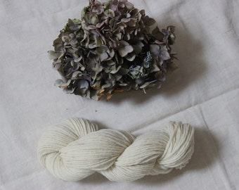 Type DK wool yarn - Pure wool white of the Massif Central