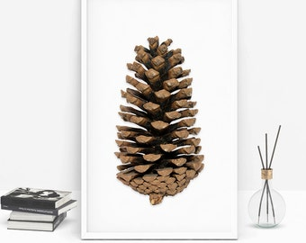 Printable art, Printable Wall Art, photography art, downloadable print, Digital wall art, pinecone wall art