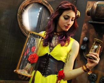 Cosplay Steampunk Belle Disney Costume