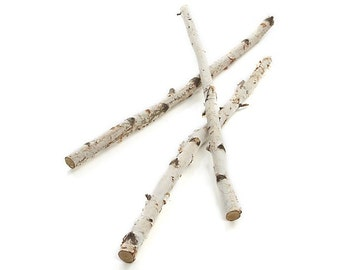 3' Birch Branches, Bundle of 3
