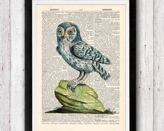 Little Blue Owl Print Dictionary Art Print / Bird Dictionary Art / Owl Wall Art Vintage Dictionary Page Book Art Print