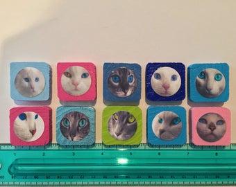 Cat/Kitten Face Magnets - Set Of 10
