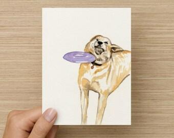 Frisbee Dog Meme Card