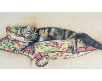 Cat on a rug