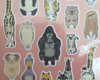 Animal sticker kawaii japan