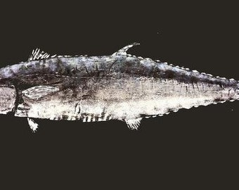 King Fish Gyotaku on Black Linen
