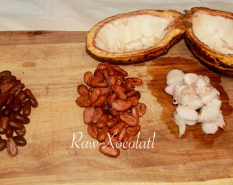 3lbs Whole Raw Cacao Beans