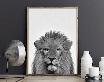 Lion Print Art, Nursery Safari Lion Art Print, Safari Animal Print, Nursery Lion Printable Art Print, Safari Animal Wall Decor, Zoo Animal