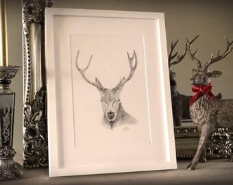 Framed Stag Art