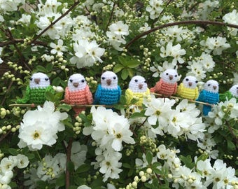 Set of 4 Crocheted Budgerigar Birds (Budgies), Perched on a Branch