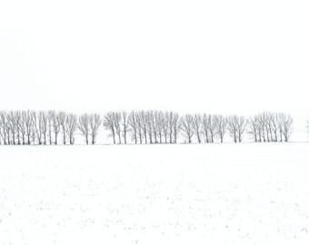 """FineArt print """"simplicity in winter II"""""""