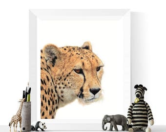 Cheetah Prints | Cheetah Photograph Printable |  Nursery Decor | Wild Cat Prints | Safari Animals | Animal Art | Cheetah Art