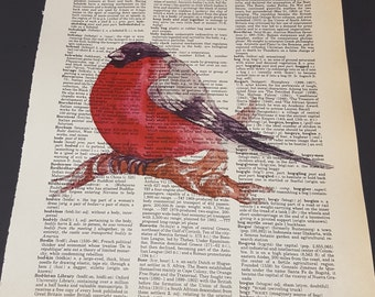 Vintage Dictionary Print - Bird