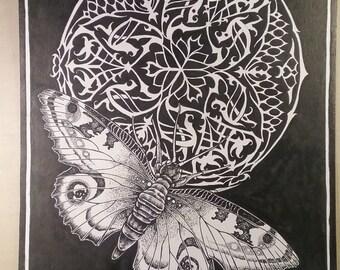Moth Oracle