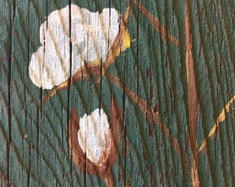 Cotton stem on green painted barn wood