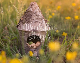 Newborn Digital Background/Wildflowers/Natural Birdhouse/Hazy Backlight