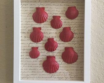 Framed shells