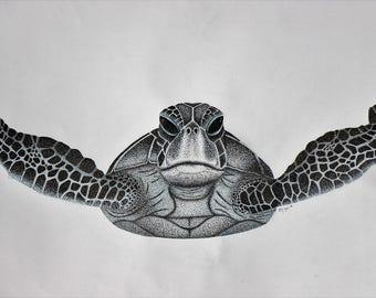 Dotty Sea Turtle