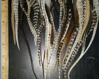 "100 XL Natural Mix Fluffy Top Salon Grade Feather Hair Extensions 6-13"" , 50 beads"