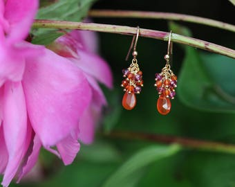 Pink tourmaline and orange carnelian cluster earrings with 14K gold fill ear wires