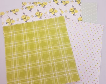 Spring Themed 12x12 Paper Pack Scrapbooking Craft