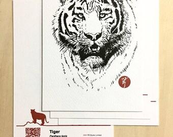 Endangered Animal Postcards (Tiger)