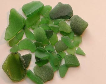 Green Lake Erie Sea Glass (50pc)