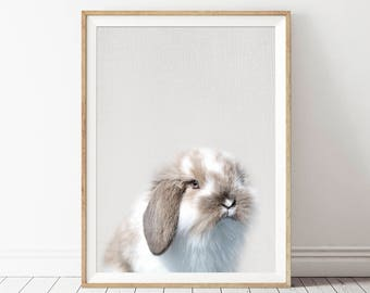 Printable Rabbit Art, Baby Rabbit Print, Nursery Bunny Print, Rabbit Animal Art, Rabbit Wall Print, Nursery Rabbit Print, Rabbit Print Art