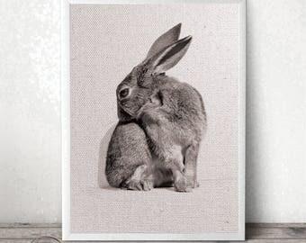 Rabbit Print - Animal Photography - Minimal Art - Bunny Wall Decor - Woodland Animal - Instant Download Art - Rabbit Photo - Nursery Print