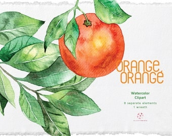 Watercolor Orange Clipart, Watercolor fruit wreath, Fruit Clipart, Watercolor Illustration, Hand Painted Orange