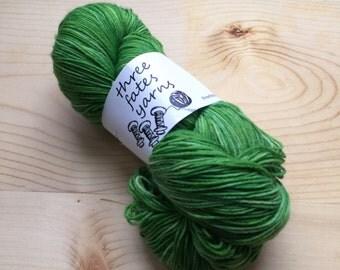 time lapse - terra sock, fingering weight sock yarn