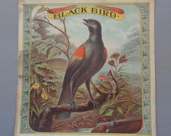 Original Vintage 1800's Black Bird Plug Tobacco Crate The Hatch Co. Lithograph Label