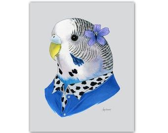 Parakeet animal print - Budgie art print - modern nursery - animals in clothes - animal art - pet portrait - Ryan Berkley Illustration 8x10