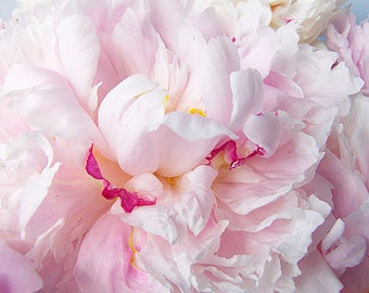 Peony Art,  Pink Peony Print, Flower Photography, Bedroom Decor, Cottage Decor, Pastel Wall Art