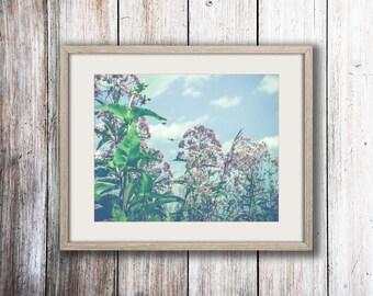 Wildflower Photograph - Autumn Decor - Nature Print - Floral Print - Bohemian Decor - Purple - Blue - Oversize - Summer Art - Dreamy Art
