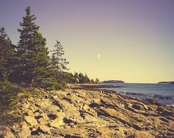 Landscape Art Print - Ocean Photography - Seascape - Nature Photography - Nautical Decor - Blue Wall Art - Tree Photo - Maine - New England