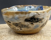 harbor seals hunting tea bowl