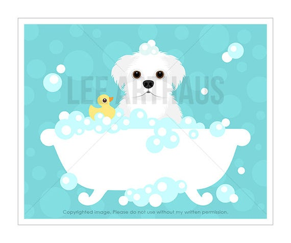 273D Dog Prints - Maltese Dog in Bubble Bath Wall Art - Bathroom Art - Maltese Print - Bath Decor - Maltese Dog Art - Maltese Drawing
