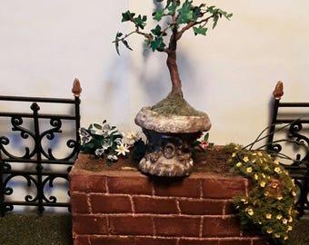 Dollhouse fig tree