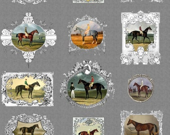 Grey Equestrian Horse Portrait Frames Fabric - The Gelding Was Framed! By Ragan - Equestrian Cotton Fabric By The Yard With Spoonflower