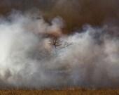 Kansas on Fire - Smoke - Kansas - Tallgrass Prairie Preserve - Controlled Burn - Flint Hills - Smoky - Fine Art Photography