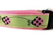 Dog Collar, Ladybug, 1 inch wide, adjustable, quick release, metal buckle, chain, martingale, hybrid, nylon