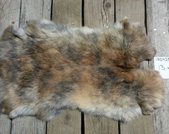 One Rabbit Hide as Shown. Lot No. 170425-N