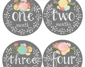 FREE GIFT, Baby Girl Month Stickers, Monthly Baby Stickers, Bodysuit Stickers, Baby Girl Shower Gift, Floral Wreath, Roses Nursery Decor