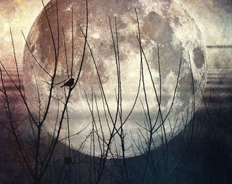 full moon fine art photo, bird branches landscape photography, dramatic home decor, bedroom wall, large canvas, spring march surreal sky zen